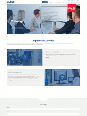 Webdesign Drupal CMS Firmenwebsite Hockenheim